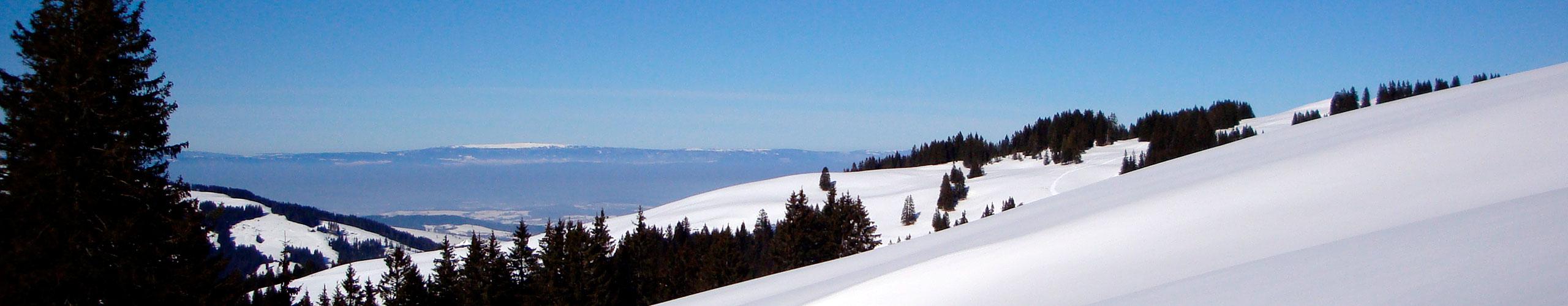 banner représentant des montagnes en hiver