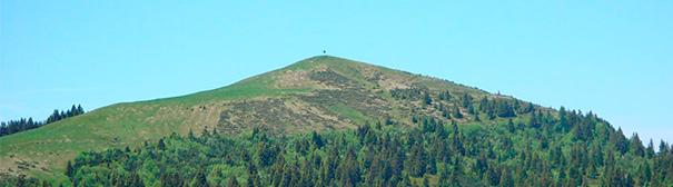 Image de randonnée dans la région de Plasselb